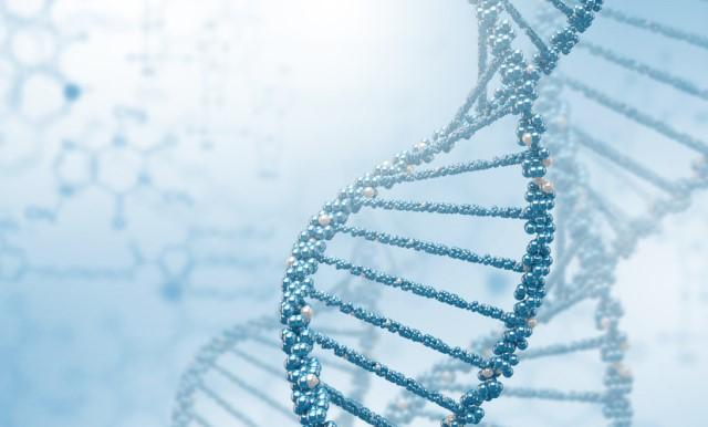 DNA640